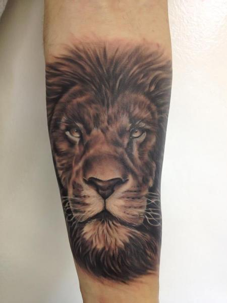 arm realistic lion tattoo by tattoo shimizu. Black Bedroom Furniture Sets. Home Design Ideas