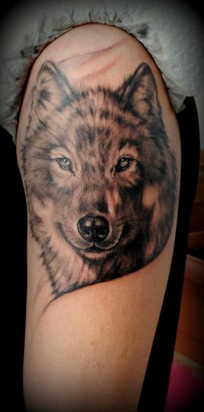 Shoulder realistic wolf tattoo by medusa tattoo for Wolf head tattoos