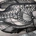 tatuagem Braço Peixe por David Hale