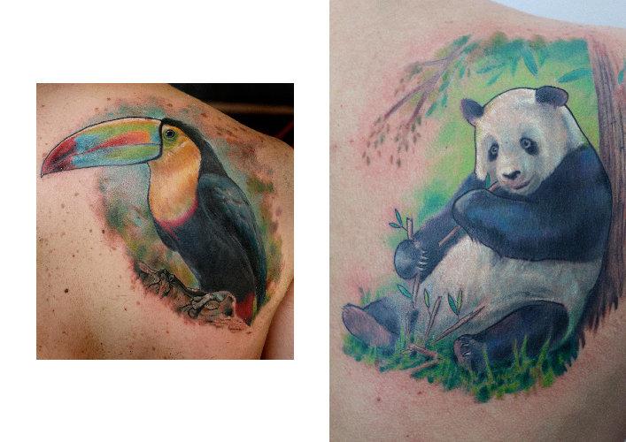 tatuagem ombro real sticas panda tucano por darwin enriquez. Black Bedroom Furniture Sets. Home Design Ideas