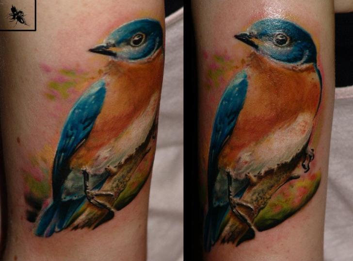Arm realistic bird tattoo by dark art tattoo for Realistic bird tattoo