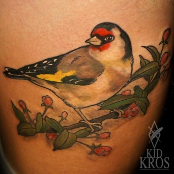 Realistische vogel tattoo von kid kros for Realistic bird tattoo