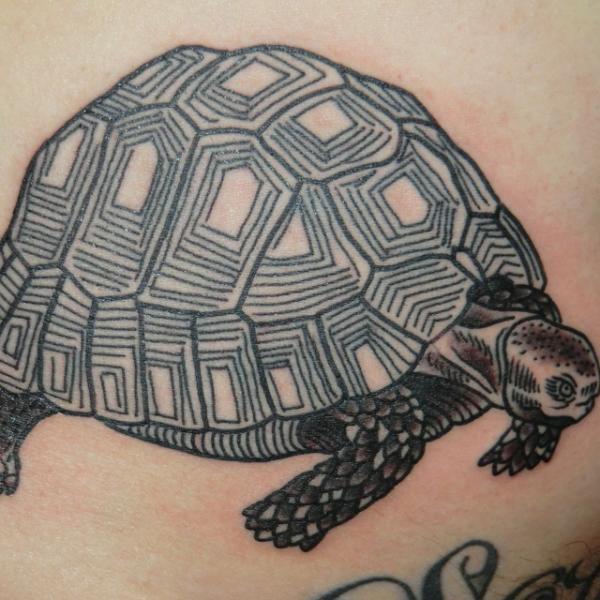 tatouage tortue par into you tattoo. Black Bedroom Furniture Sets. Home Design Ideas