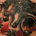 Old School Belly Horse tattoo by Paul Anthony Dobleman