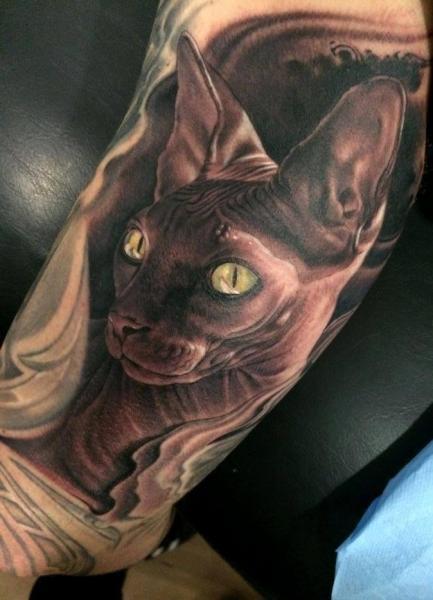 tatouage bras r233aliste chat par fredy tattoo