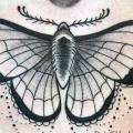 Schmetterling Bauch tattoo von Providence Tattoo studio