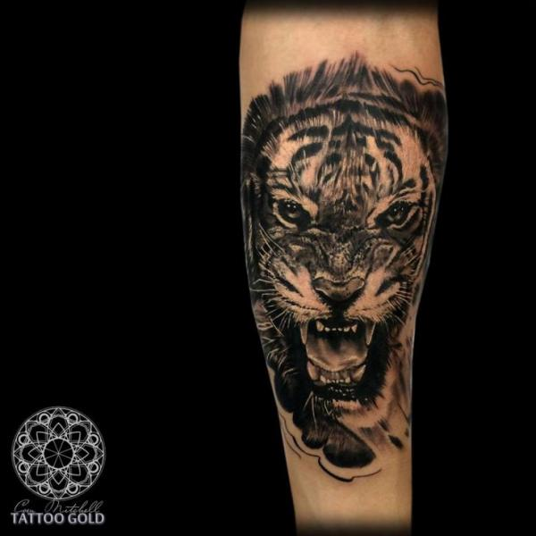 arm realistic tiger tattoo by coen mitchell. Black Bedroom Furniture Sets. Home Design Ideas