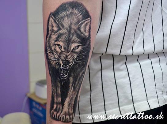 Arm Realistic Wolf Tattoo by Secret Tattoo & Piercing