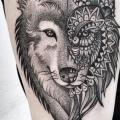 tatuagem Ombro Lobo Dotwork por Zmierzloki tattoo