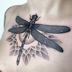 mandala dragonfly tattoo