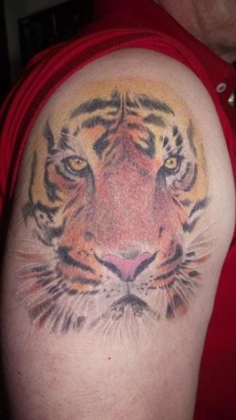 Shoulder Realistic Tiger Tattoo by Paul Egan Tattoo