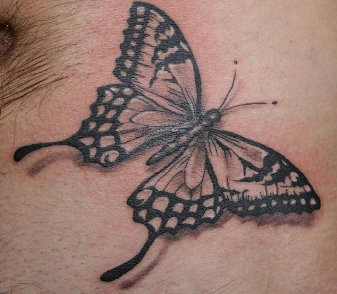 Realistische Schmetterling Tattoo von Cake Happy Tattoo