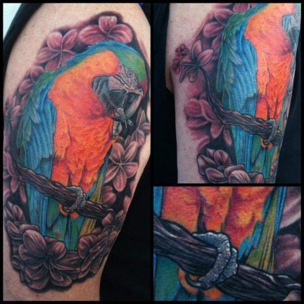 Arm Realistische Papagei Tattoo von Mike DeVries Tattoos