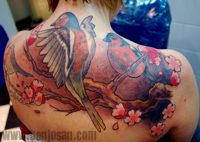 Back Neck Redbreast Tattoo by Dimitri Tattoo