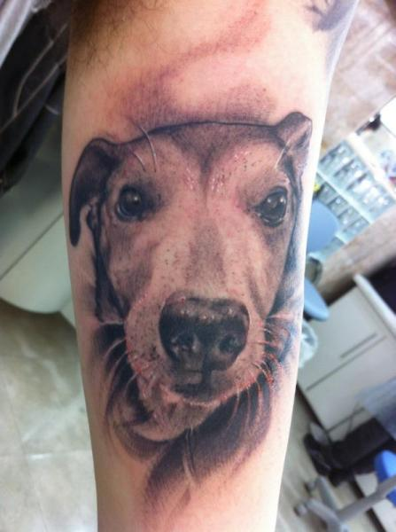 Arm Realistic Dog Tattoo by Leds Tattoo