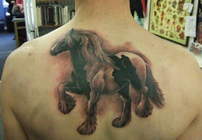 Realistic Back Horse Tattoo by Tattoo Zoo