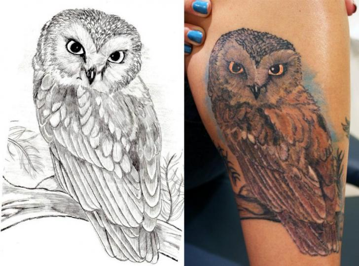 Arm Realistic Owl Tattoo by Sink Candy Tattoo