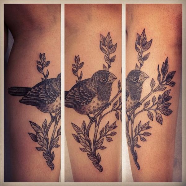 tatouage jambe dotwork oiseau par gregorio marangoni