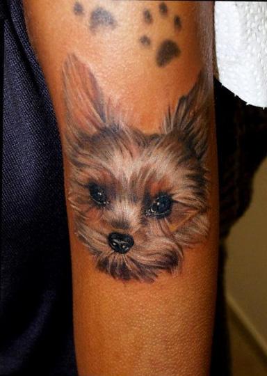 Arm Realistic Dog Tattoo by Art Line Tattoo