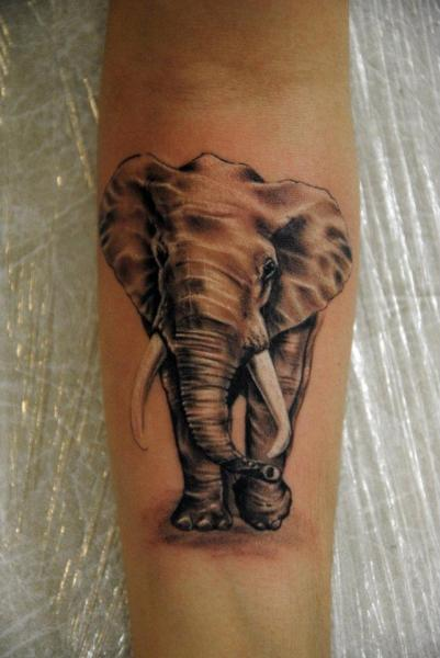Arm Realistische Elefant Tattoo von Mai Tattoo