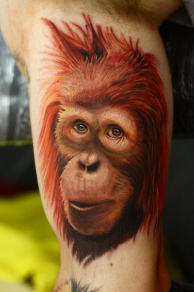 Arm Realistic Monkey Tattoo by Nemesis Tattoo