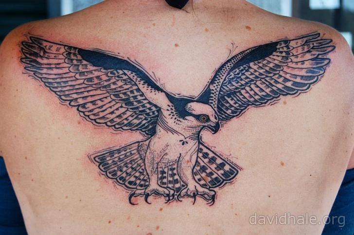 Back Eagle Tattoo by David Hale