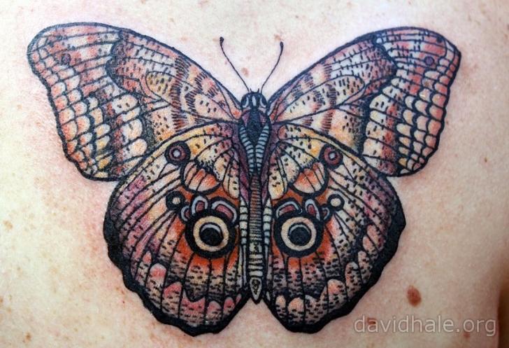 Butterfly Tattoo by David Hale