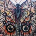 Butterfly tattoo by David Hale