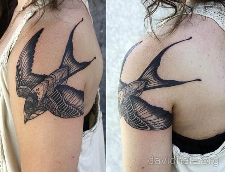 Schulter Vogel Tattoo Von David Hale