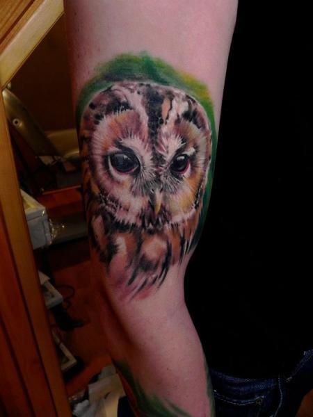 Arm Realistische Eulen Tattoo von Rock Ink