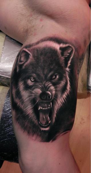 Arm Realistische Wolf Tattoo von Rock Ink