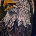 Arm Realistic Eagle tattoo by Heaven Of Colours