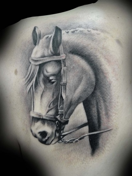 Shoulder Realistic Horse Tattoo by Demon Tattoo