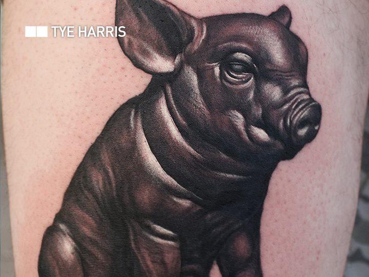 Pig Tattoo by Bang Bang NYC