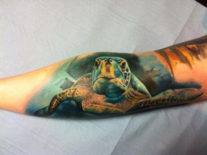 Arm Realistische Schildkröte Tattoo von Restless Soul Tattoo