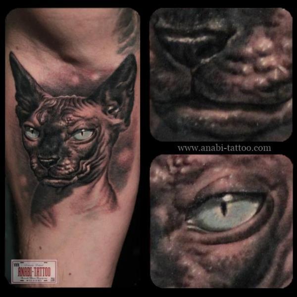 Realistic Cat Tattoo by Anabi Tattoo