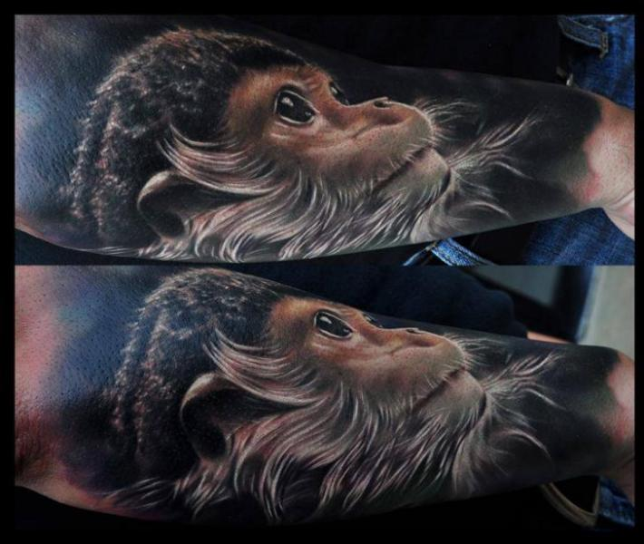 Arm Realistic Monkey Tattoo by Venom Ink