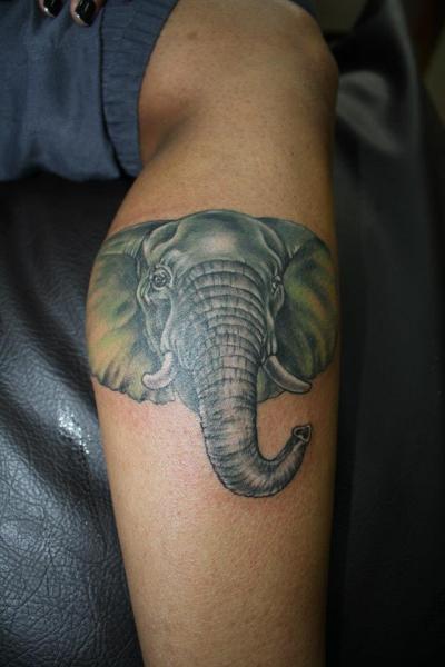 Realistic Calf Elephant Tattoo by Bird Tattoo