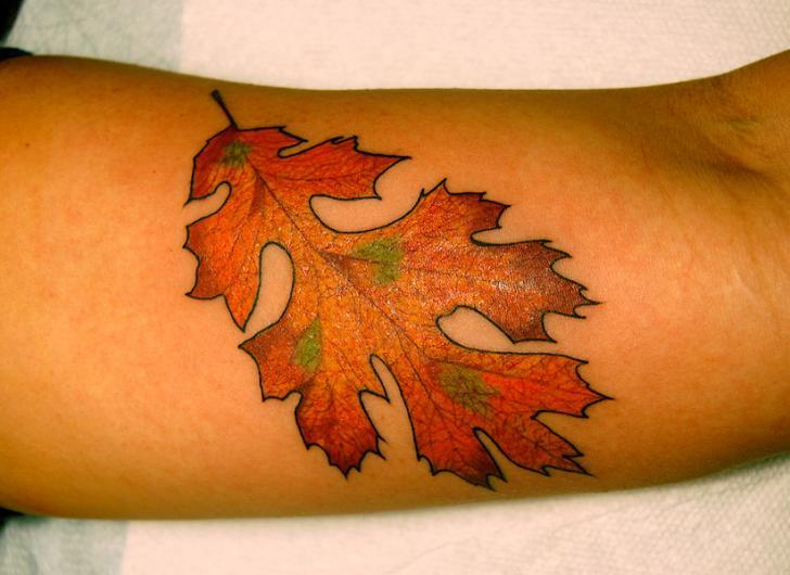 Tatuaggio Braccio Realistici Foglia di Saved Tattoo