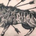 tatuagem Lobo Barriga Flecha por Saved Tattoo