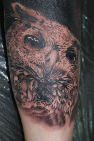 Arm Realistic Owl Tattoo by Tattoos by Mini