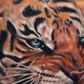 Realistische Tiger tattoo von Tattoo by Roman