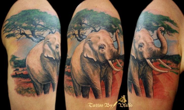 Shoulder Realistic Elephant Tree Tattoo by Tattoo Rascal