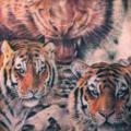 tatuaje Realista Espalda Tigre por Steel City Tattoo