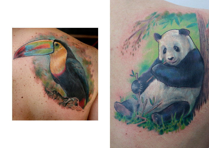 Shoulder Realistic Panda Toucan Tattoo by Darwin Enriquez