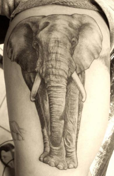 Arm Realistic Elephant Tattoo by Border Line Tattoos