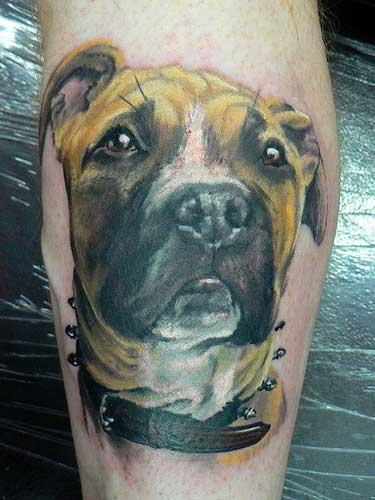 Arm Realistische Hund Tattoo von Dzy Tattoo