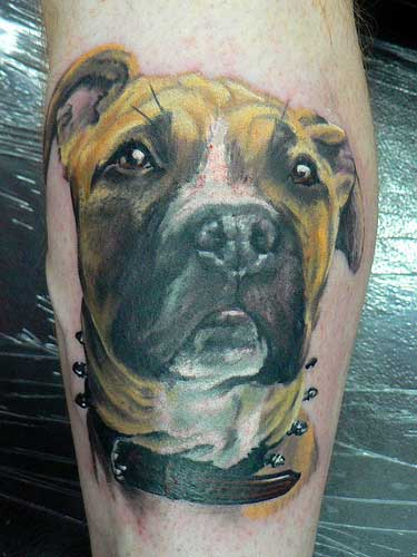 Arm Realistic Dog Tattoo by Dzy Tattoo