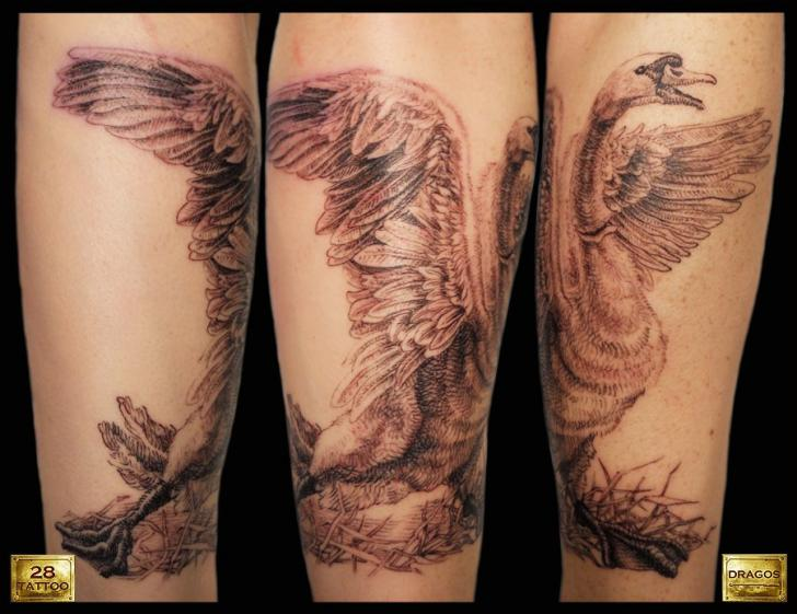 Arm Realistic Goose Tattoo by 28 Tattoo