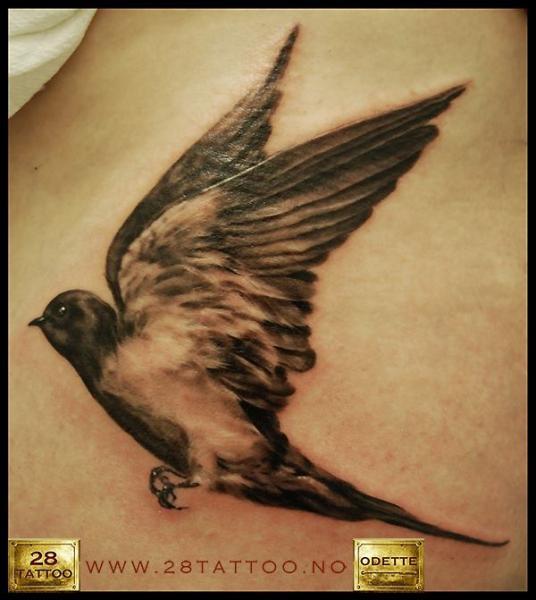 Realistic Bird Tattoo by 28 Tattoo